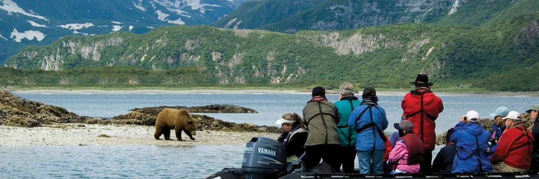 Zegrahm Expeditions bear encounters