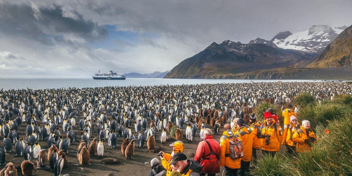 Explore nature intimately and authentically on an expedition cruise.