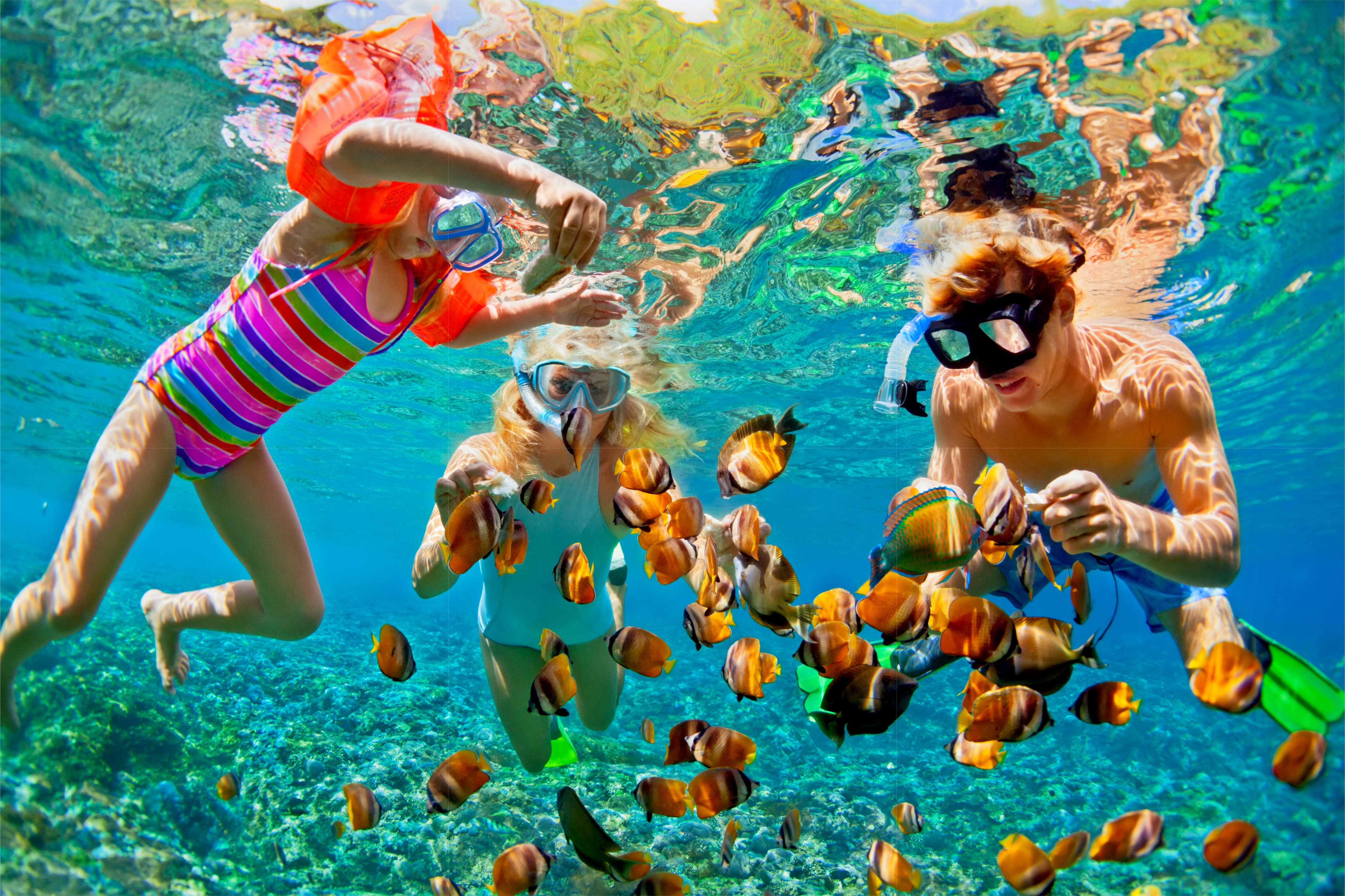 Snorkeling on Roatán is very safe, accessible and can easily enjoyed by any age or skill level.