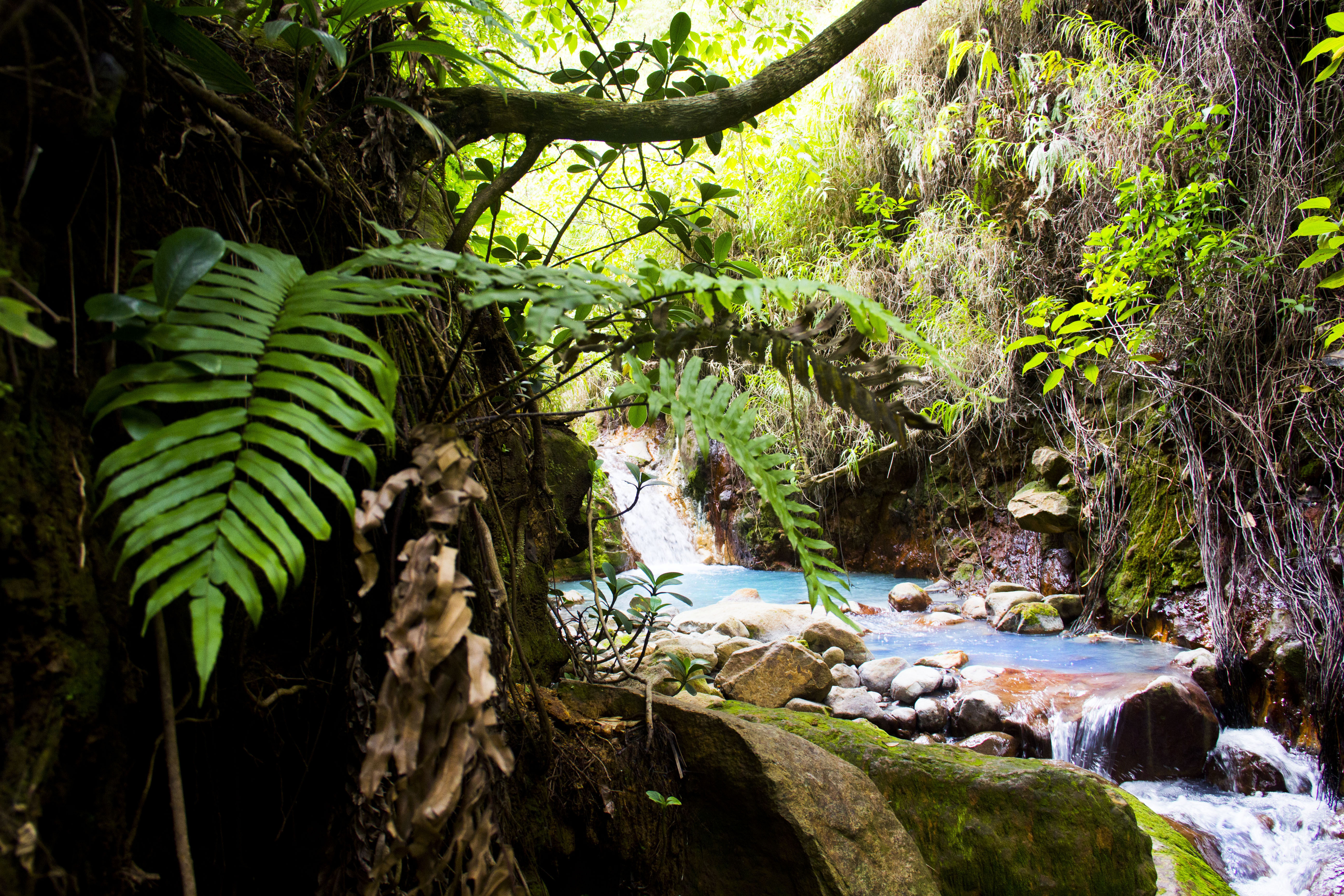 Natural hot pools, Boiling Lake, Dominica